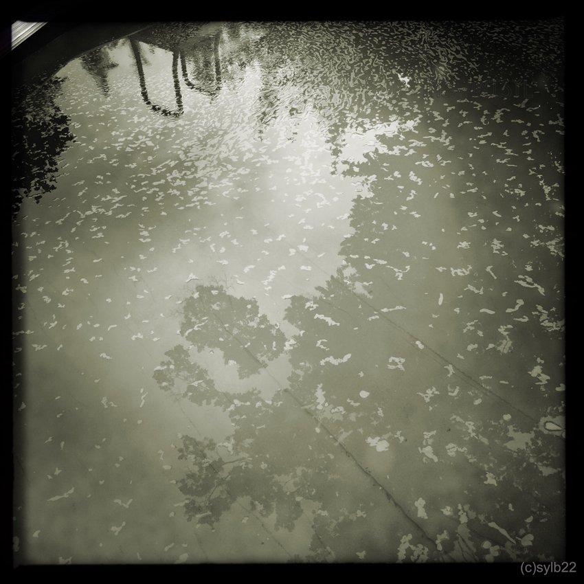 HipstamaticPhoto-518206200.842570